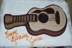 Shape Cakes Acoustical Guitar